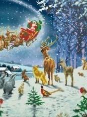 Santa's Forest Fligth