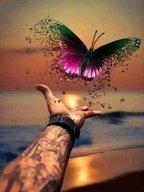 vlinder met hand