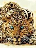 tijger liggen