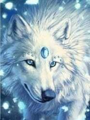 Hoofd witte wolf