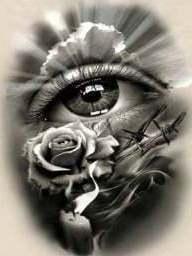Roos met oog